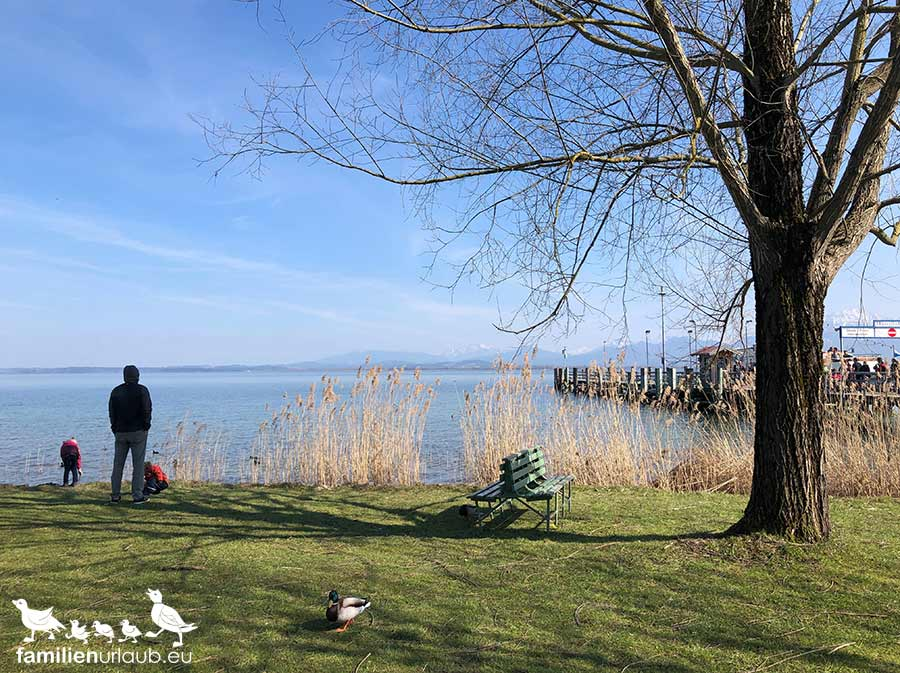 Chiemsee Winter