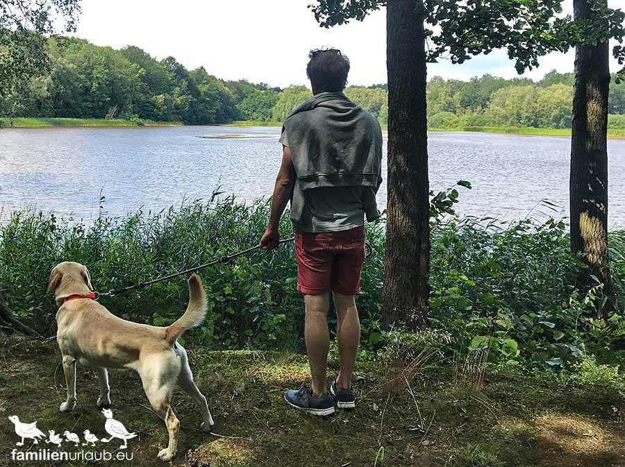 Mann Hund See