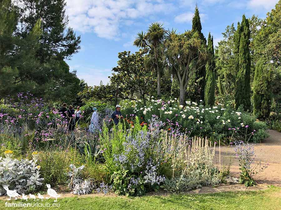 London Regents Park Pflanzen
