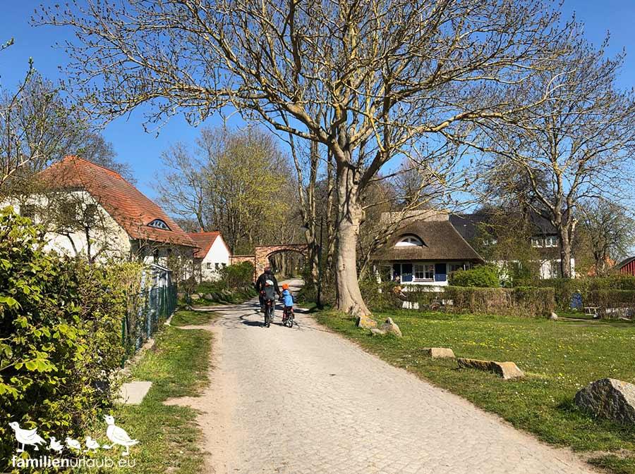 Fahrradtour auf Hiddensee