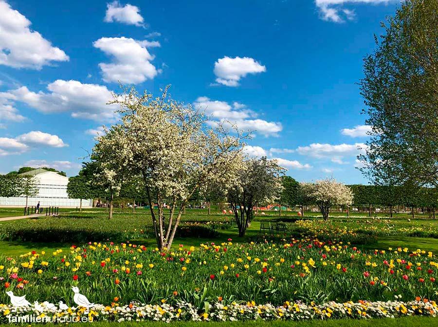 Oranienburg Schlosspark Frühling