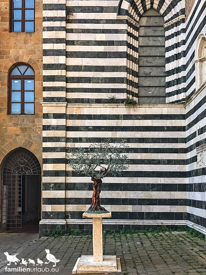 Toskana Volterra TreeofLife